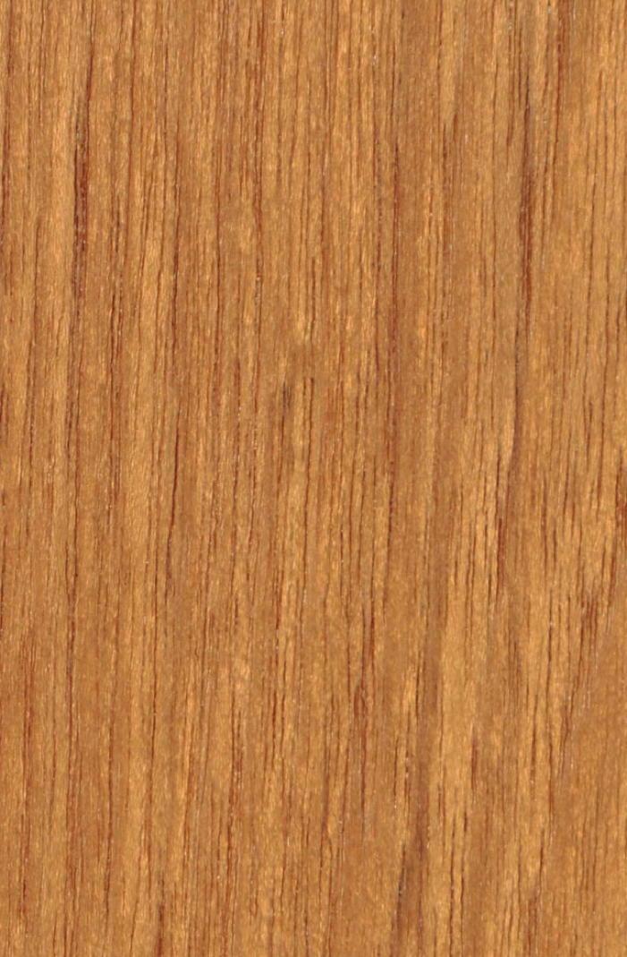 gartenstuhl niehoff nizza teak stativ polster grau gartenm bel onlineshop. Black Bedroom Furniture Sets. Home Design Ideas